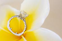 Diamond Ring Against Plumeria Flower Petal