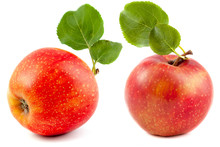 Red Apple With Leaves, A Set O...