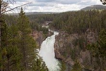 Upper Falls In The Yellowstone...