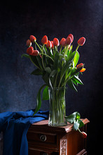 Red Tulips On A Black Backgrou...