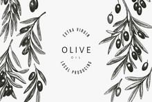 Olive Branch Design Template. ...