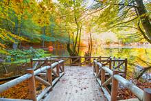 Autumn Landscape In (seven Lak...
