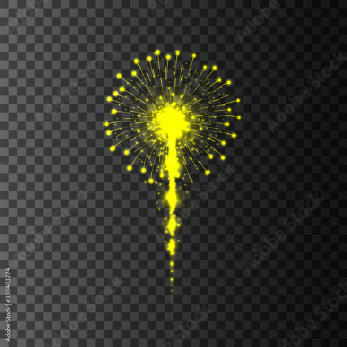 Fireworks on transparent background. Vector illustration. Canvas Print