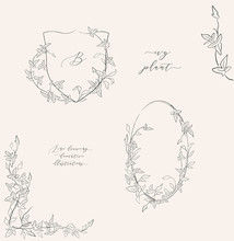 Collection Line Drawing Ivy Plant Vector Floral Wreaths, Oval Frame, Heraldry, Hand Drawn Corners With Branches, Leaves, Plants, Herbs. Botanical Illustration. Leaf Logo. Wedding Invitation, Monogram