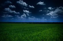 Dark  Stormy Sky And Green Fie...