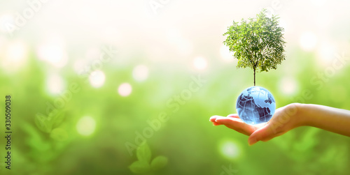 Card for World Earth Day or Arbor Day Wallpaper Mural