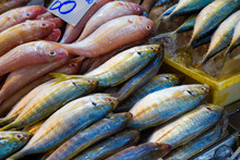 Many Type Colorful Of Seafood ...