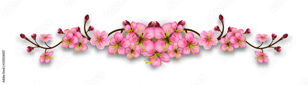 Fototapeta Element of cherry blossom branches. Line with flowers and buds isolated on a transparent background. Realistic pink floral border. Vector illustration