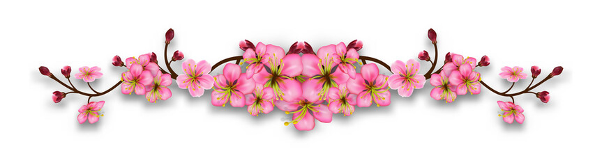 Naklejka Do sypialni Element of cherry blossom branches. Line with flowers and buds isolated on a transparent background. Realistic pink floral border. Vector illustration
