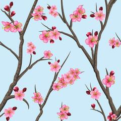 FototapetaCherry or sakura seamless pattern background, Spring Floral texture