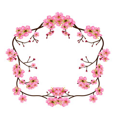Fototapeta Na szklane drzwi i okna Wreath of cherry blossom branches. Frame with flowers and buds isolated on a transparent background. Realistic pink floral border