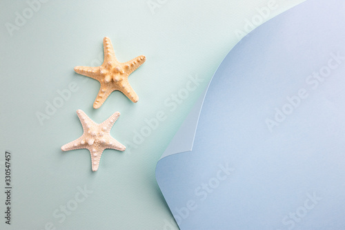 Obraz composition of exotic sea shells and starfish on blue background, top view. Summer sea flat lay - fototapety do salonu
