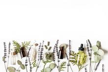 Homeopathy Eco Alternative Medicine Concept