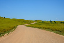 Dirt Road Winds Through Green ...