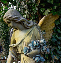Guardian Angel. Grief For The ...