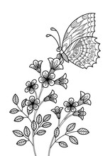 Butterfly On The Flower Anti-tress Doodle Coloring Book Page For Adult. Zentangle Insect Black And White Illustration.