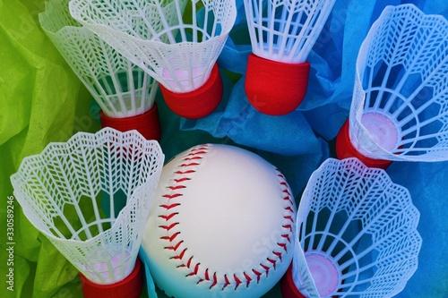 Badminton Birdies and a Baseball Canvas Print