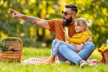 Joyful Family Picnicking In Su...