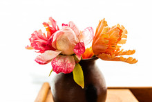 Pink And Orange Tulips Flowers Macro Closeup Bouquet Arrangement Inside Vase Potted Plant Closeup Against Wall Curtains Blinds In White Background
