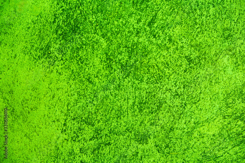 green texture background - 330636010