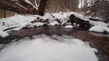 Creek In The Winter In The For...