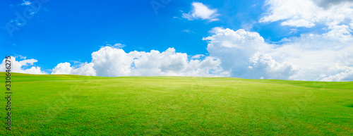 Fototapeta Green grass field and blue sky with white clouds,panoramic view.