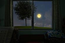 Moonlight Drop Through The Win...