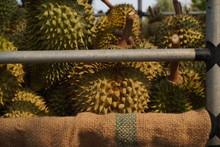 Durian Fruit In Truck For Mark...