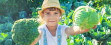 Child With Cabbage And Broccol...