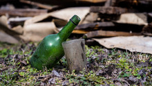 Bottle Of Wine On Grass