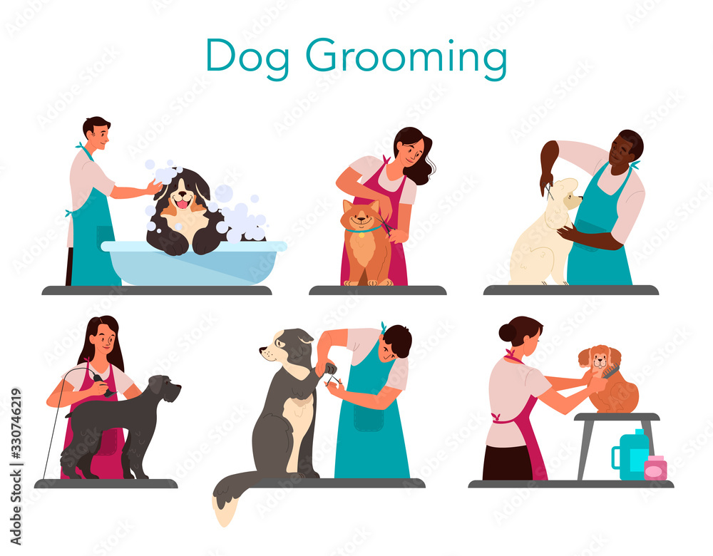Fototapeta Collection of professional barber grooming dog. Woman and man
