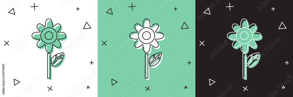 Fototapeta Set Flower icon isolated on white and green, black background. Vector Illustration