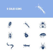 Bug Icon Set And Earthworm With Monarch, Mite And Cicada. June Bug Related Bug Icon Vector For Web UI Logo Design.