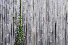 Old Bamboo Wall With Tropical ...