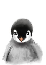 Penguin Print • Nursery Wall...