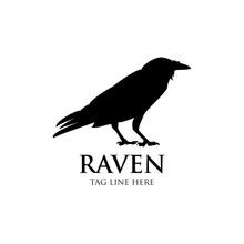 Raven Logo Icon Vector Design Template