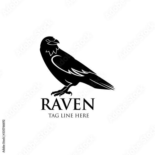raven logo icon vector design template Wallpaper Mural