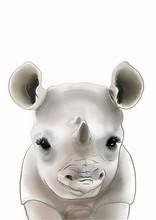 Baby Rhino Print • Rhinocero...