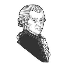 Wolfgang Amadeus Mozart Portra...