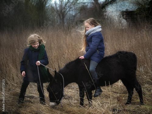 Fototapeta Village children graze a donkey in the field and ride on horseback obraz