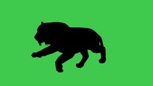 3d Animation Of Panther Moving...