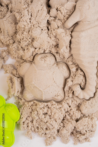 Sand molds with sand, turtle Canvas Print