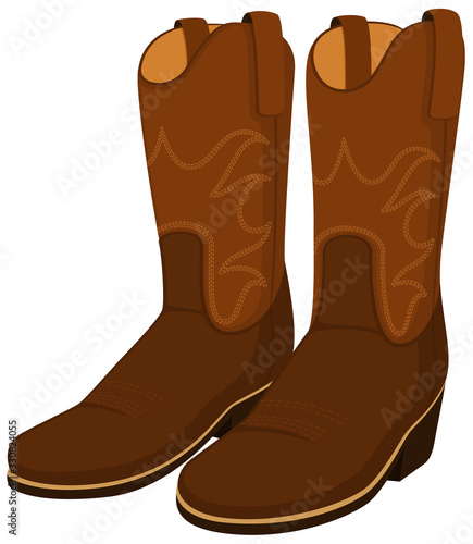 Vászonkép Vector illustration of a pair of cowboy boots.