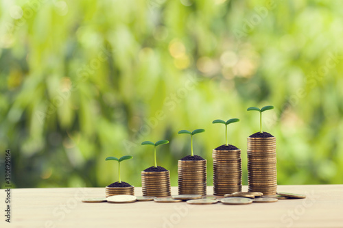 Financial concept: Green sprout on rows of increasing coins on wood table Slika na platnu