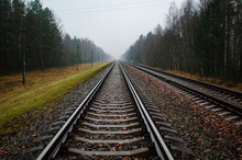 Railway Rails And Sleepers Along The Forest