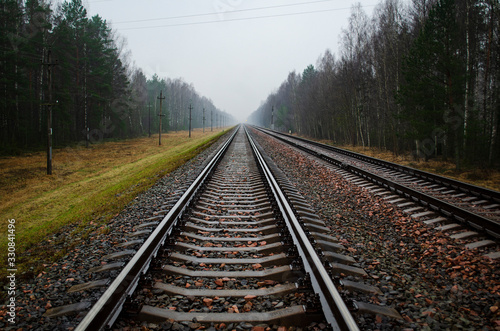 Fotomural railway rails and sleepers along the forest