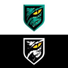 Predator Or Raptor Eye Insignia  New Updated Version