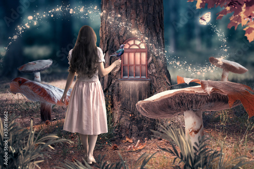 Obraz Girl in dress with bird in hand in fantasy enchanted fairy tale forest with giant mushrooms, magical shining window in pine tree hollow and flying magic butterfly leaving path with luminous sparkles - fototapety do salonu