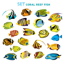 Set Of Coral Reef Fishes.