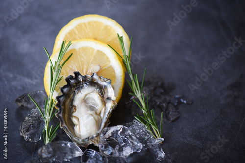 Fototapeta Close up open oyster shell with herb spices lemon rosemary served table and ice healthy sea food raw oyster dinner in the restaurant gourmet food Fresh oysters seafood on black plate background obraz